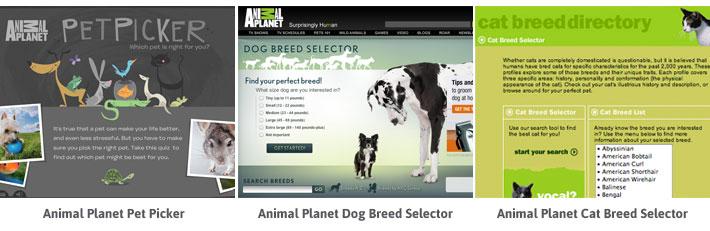 pet blog image