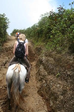 Horseback Riding Safety