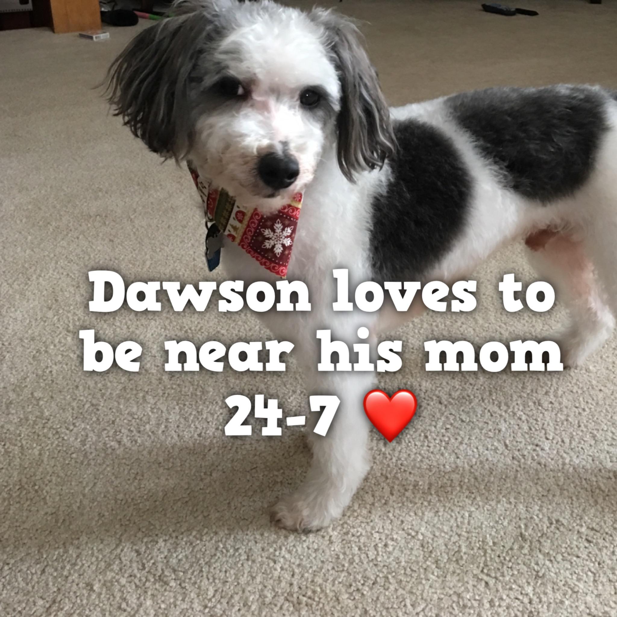 Dawson.jpg