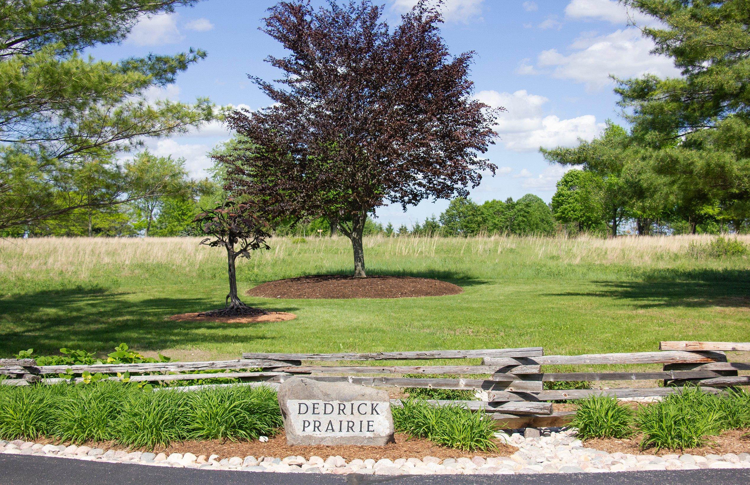Dedrick Prairie