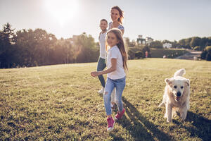 Family and pet heat safety tips