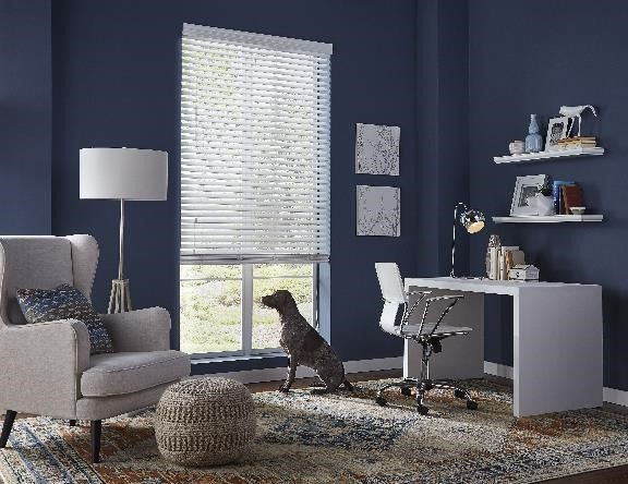 Pets and blinds