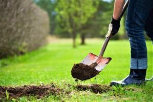 Stay safe while digging in your yard this summer