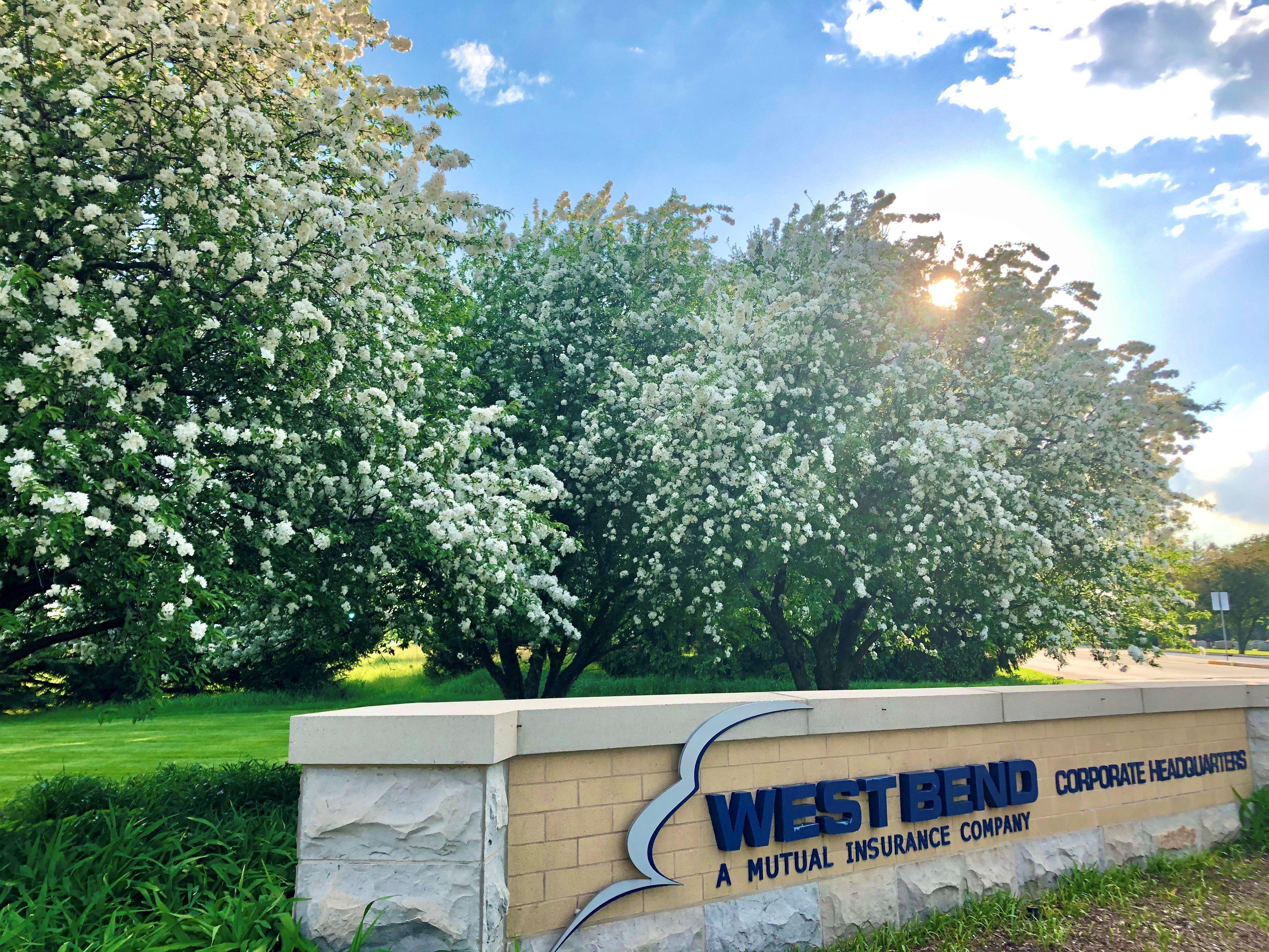WB sign flowering tree