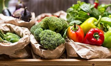 agribusiness-vegetables