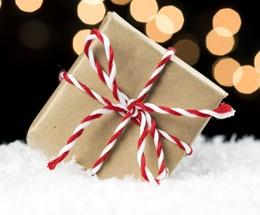gift-in-snow.jpg