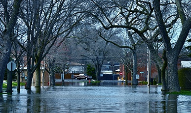 FloodedStreet.jpg